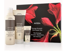 Aveda hair repair